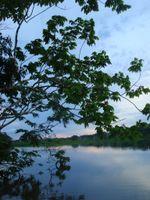 Viaje selva mayo 2009 109
